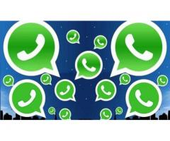 Mobile Whatsapp Bulk Services  in Ahmedabad